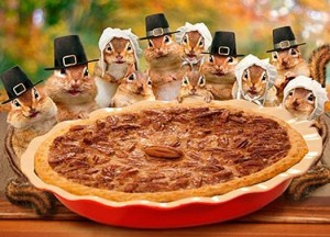squirrels-with-pumpkin-pie