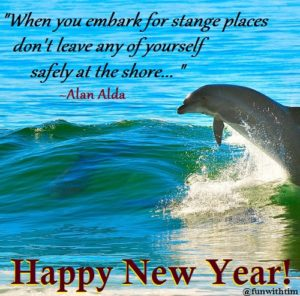 dolphin-new-year